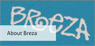 About breza